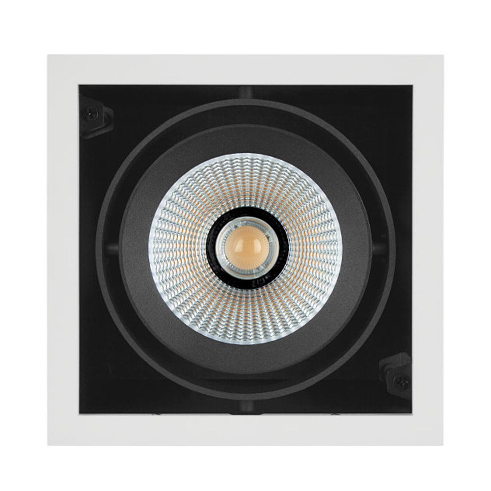 LED Multi Spot 1 x 30W Downlight 3000K 38 Degrees Low Flicker Light