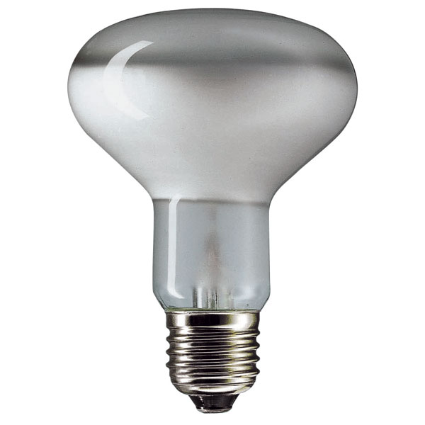 Halogen R80 Energy Saver